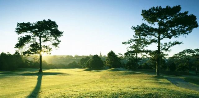 Buổi sáng tại sân golf