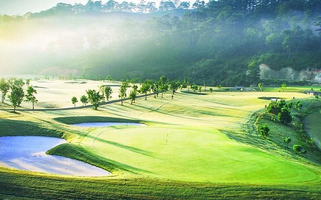 sân golf trong sương sớm