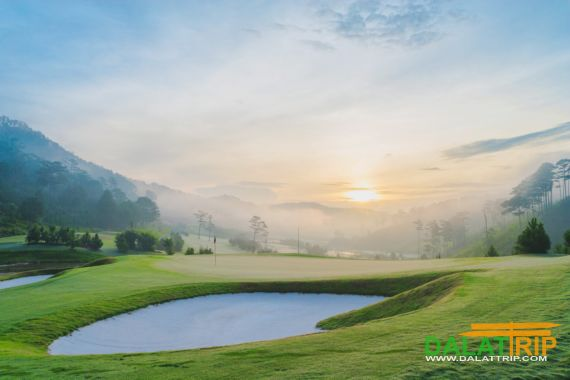 Утро на Sacom поле для гольфа